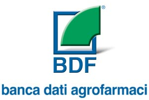 BDF srl
